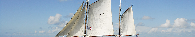 http://www.amisdumartroger.com/uploads/images/bandeaux/interne-26.jpg