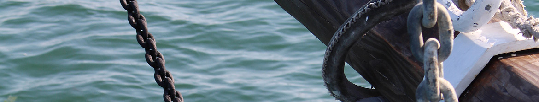 http://www.amisdumartroger.com/uploads/images/bandeaux/interne-9.jpg